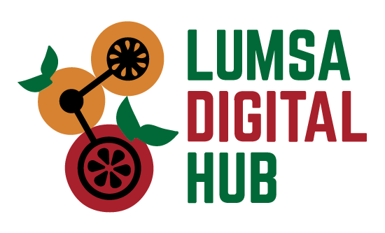 Lumsa Digital Hub-